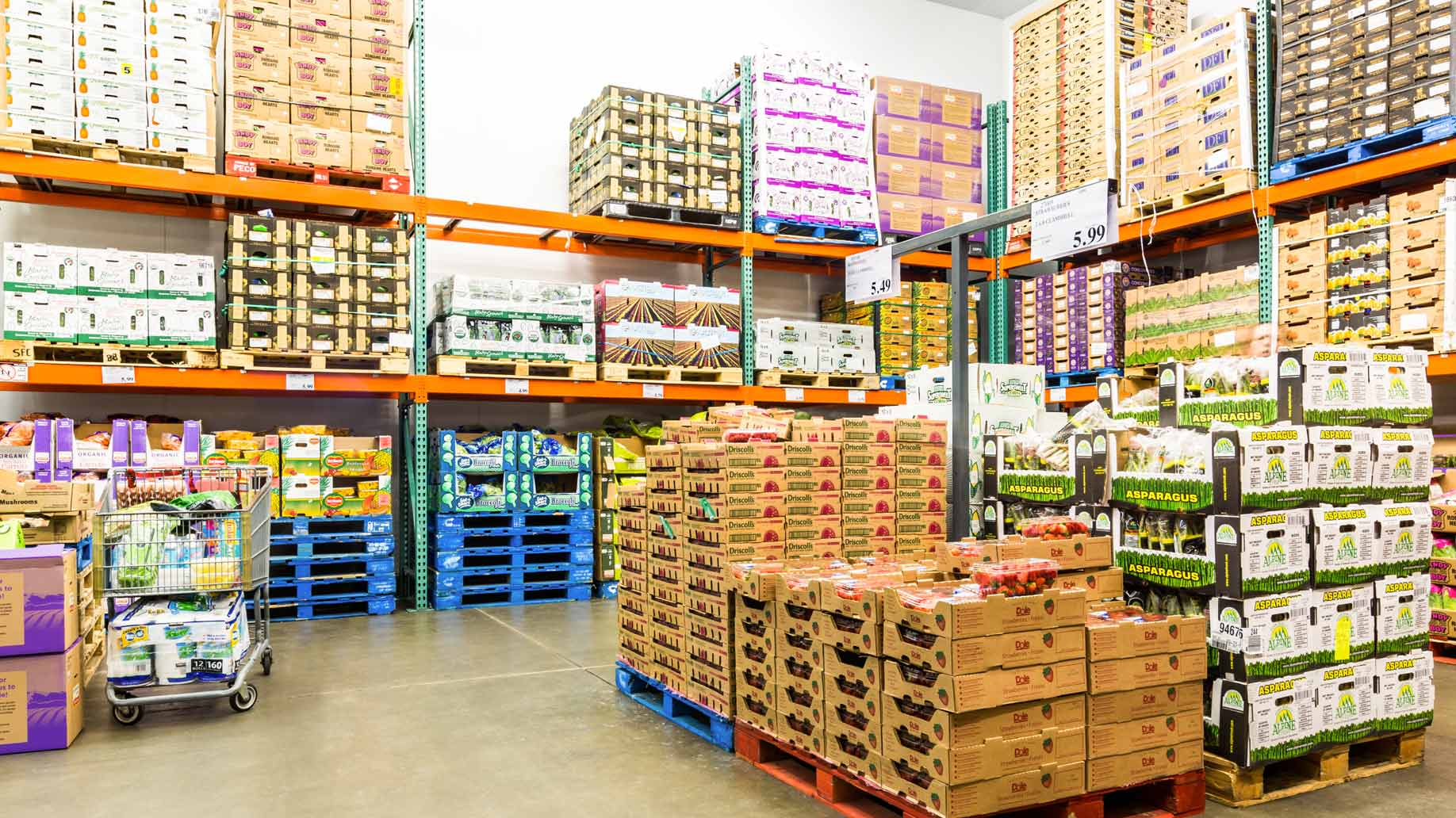 Wholesale warehouses for household chemicals 99