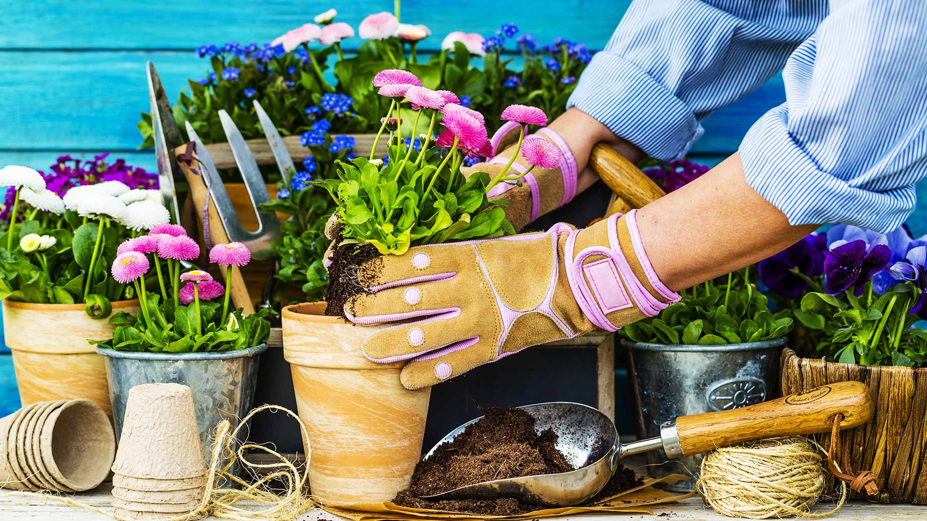 lady planting flowers in a pot