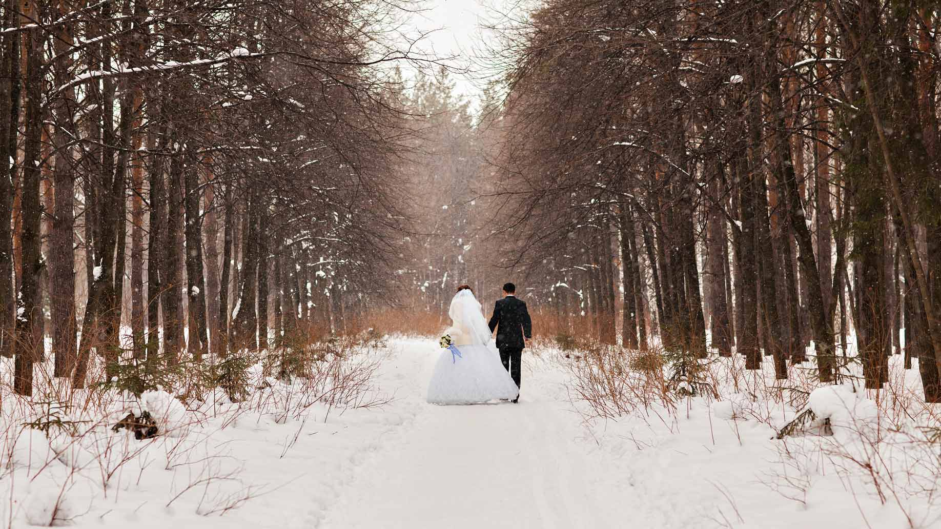 winter wedding snow woods