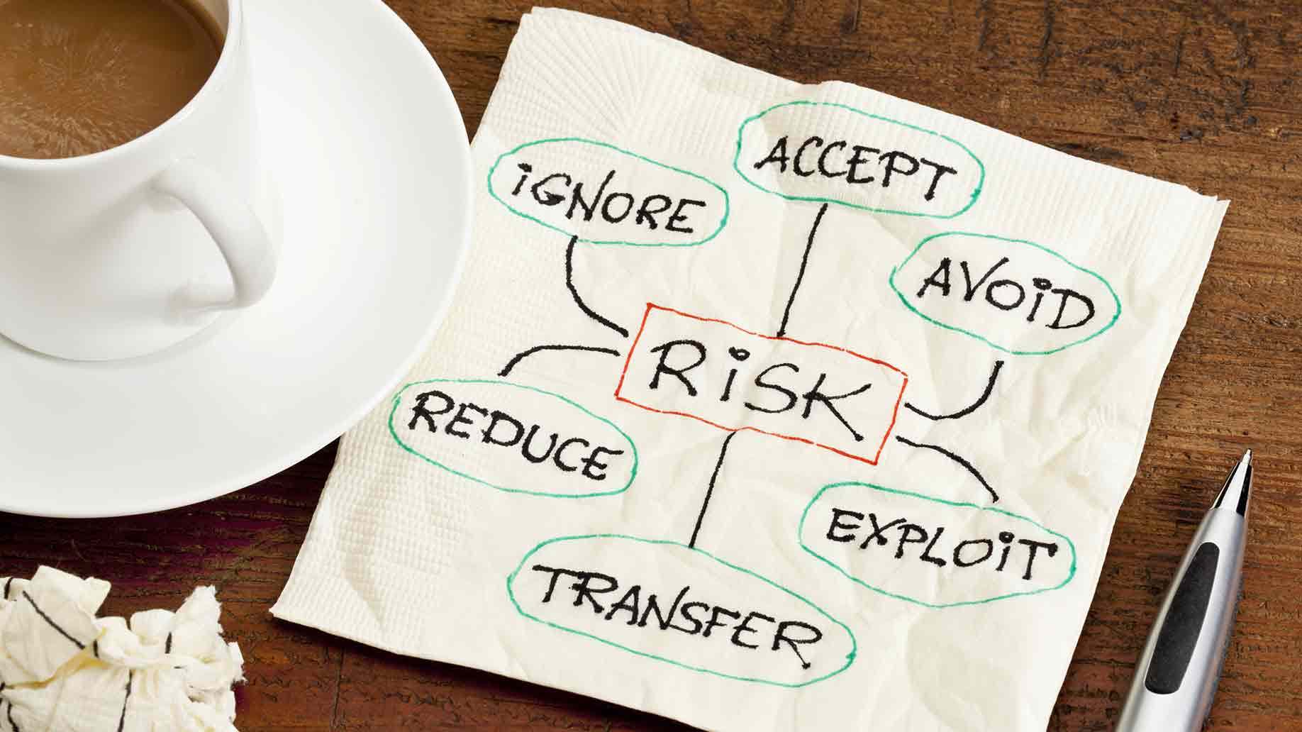 risk management strategies ignore accept avoid