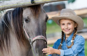 Owning Horse Annual Cost