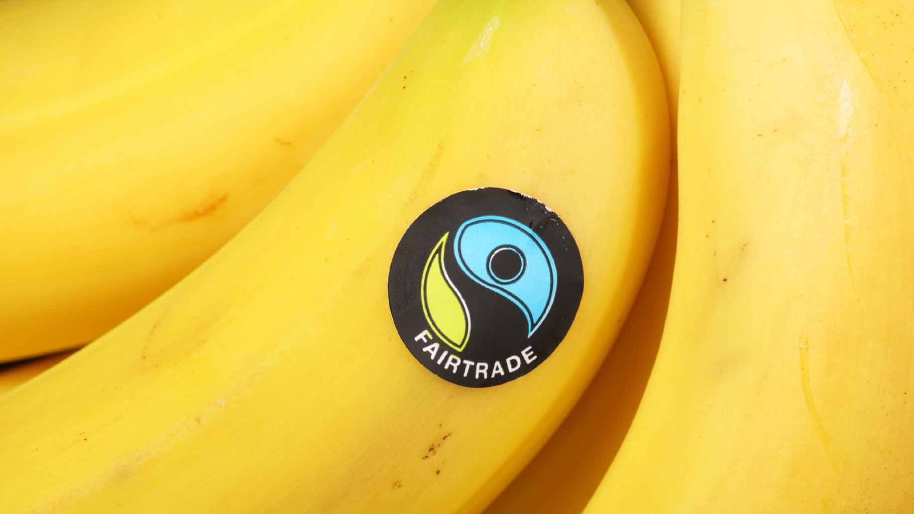fair trade certified bananas