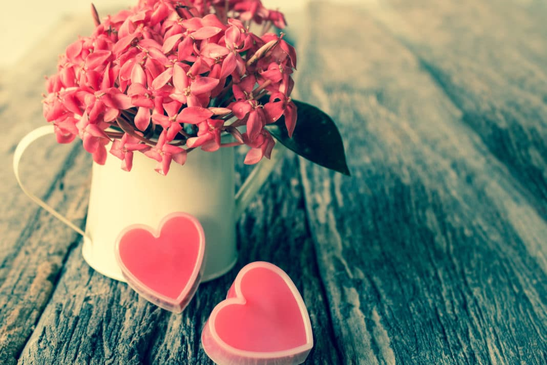 Valentines Day Ideas Gifts Activities