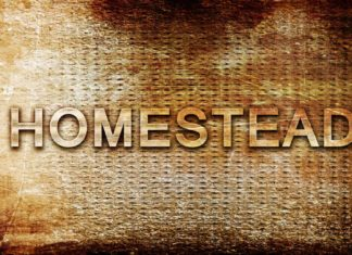 homesteading homestead house