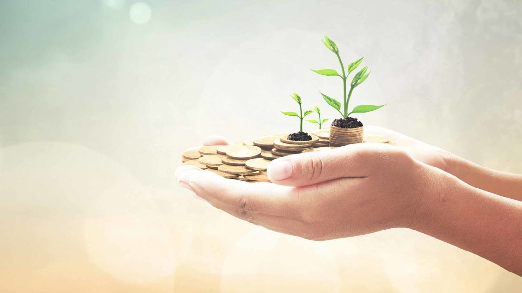 investment concept human hands holding coins with sprouts indicating growth