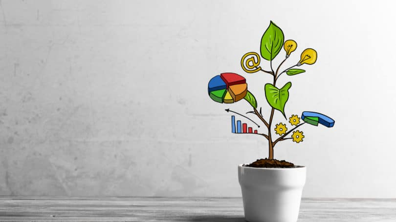 Growth Plant Income Strategy