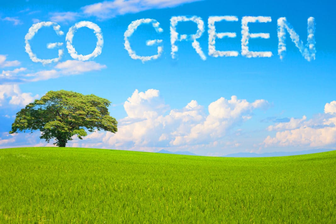 Green Living Save Money