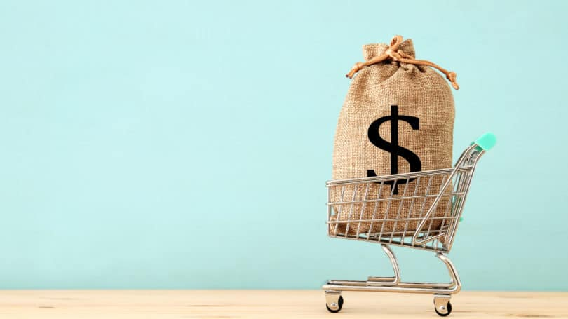 Shopping Cart With Bag Of Money Payment